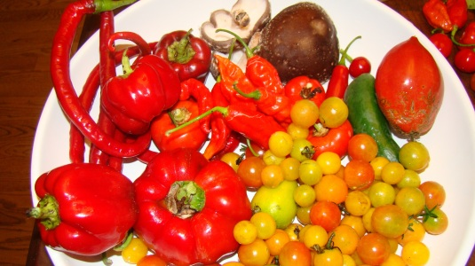 Harvest August
